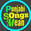 What is the meaning of this Punjabi song in Hindi or English