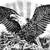 The Liberty Eagles